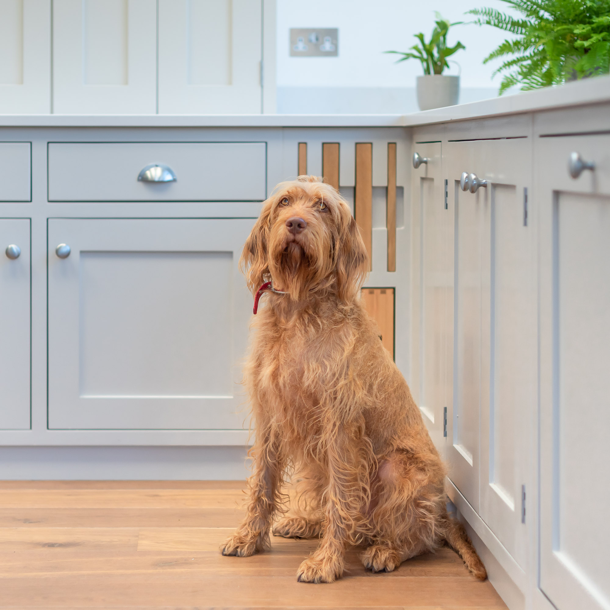 The Ilanga Kitchen by Shere Kitchens - beautiful kitchens handmade in Shere Guildford Surrey